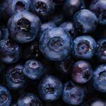 los arándanos y la salud
