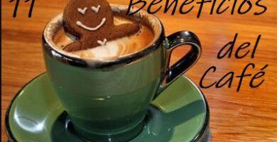 conoce los beneficios del café