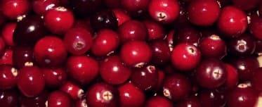 propiedades de los arandinos para la salud