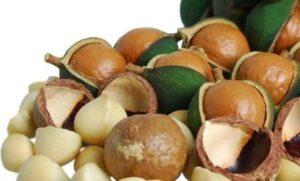las propiedades beneficiosas de las nueces de macadamia