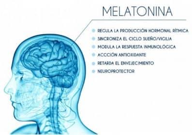 características de la melatonina