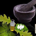 plantas beneficiosas para la salud